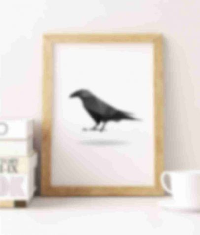 raven-shop